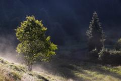 V údolí Křemelné