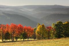 Údolí Vydry