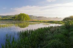 Zbynické rybníky