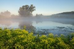 Mečíchovské rybníky