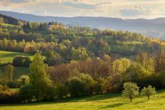 Krajina u Kašperských hor