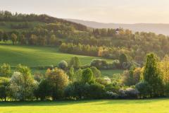 Kašperskohorsko