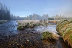 Soutok Javořího a Roklanského potoka